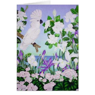 Cartão Cockatoo violeta