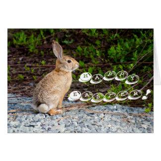 Cartão Coelho de coelho do deserto