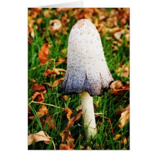 Cartão Cogumelo do outono