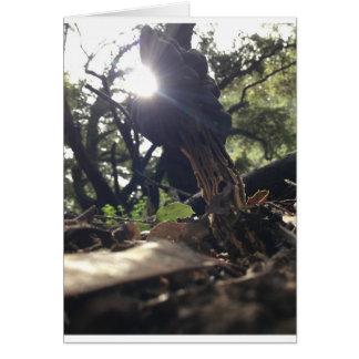 Cartão Cogumelo Elfin da sela