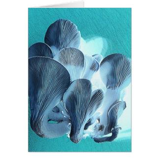 Cartão Cogumelos de ostra no azul