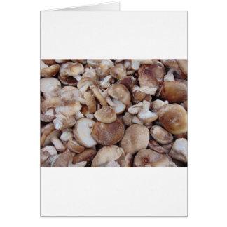 Cartão Cogumelos de Shiitake