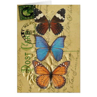 Cartão Coleção da borboleta