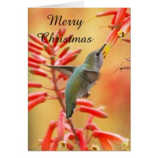 Cartão Colibri cercado pela mandioca, Feliz Natal