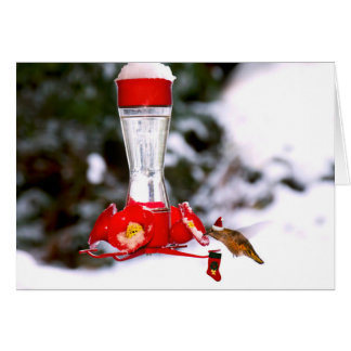 Cartão Colibri e neve do Natal