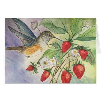 Cartão Colibri nas morangos