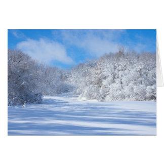 Cartão Colinas nevado do parque de Marthaler