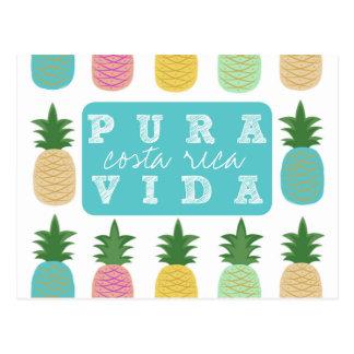 Cartão colorido de Costa Rica do abacaxi Cartão Postal