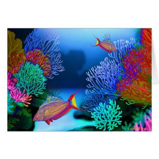 Cartão colorido dos peixes do Wrasse do pisca-pisc
