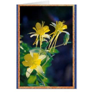 Cartão Columbine. amarelo