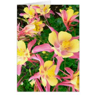 Cartão Columbines cor-de-rosa e amarelo