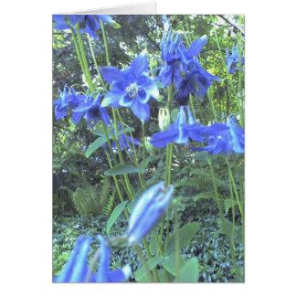 Cartão Columbines crescentes do primavera