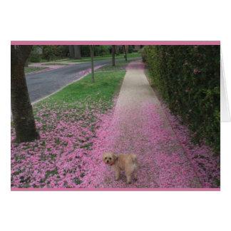 Cartão com a flor de cerejeira com Doggy bonito