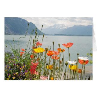 Cartão com cena da suiça - vazio