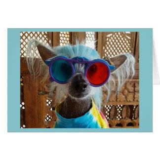 Cartão com crista chinês bonito do cão do Hippie