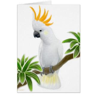 Cartão com crista cor de limão do Cockatoo