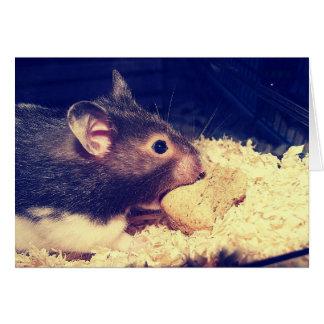 Cartão com fome do hamster