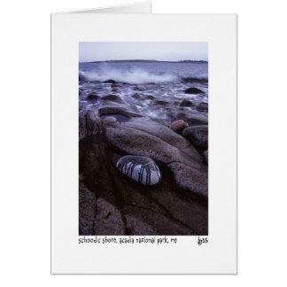 Cartão com fotos da costa de Schoodic