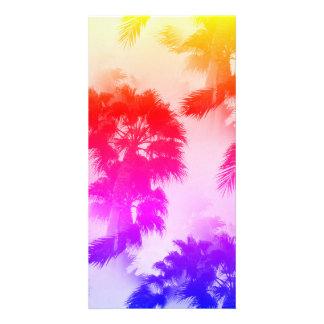 Cartão com fotos das palmeiras