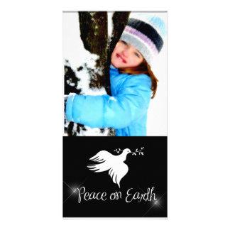Cartão com fotos do feriado da pomba do branco