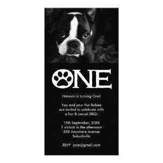 Cartão com fotos do primeiro aniversario dos cães