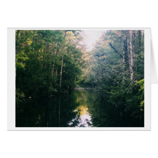 Cartão com fotos do vazio do verde dos marismas