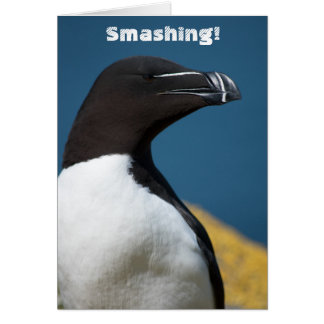Cartão com fotos moderno dos parabéns