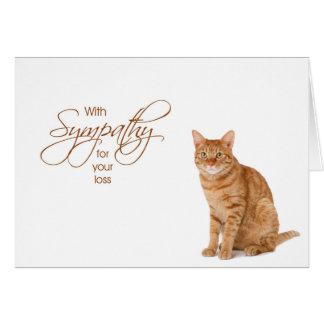 Cartão Com simpatia - perda de gato