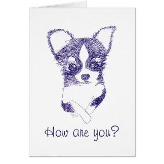 Cartão Como é você? - O cão polido