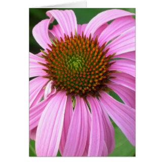 Cartão Coneflower cor-de-rosa você surpreende-me