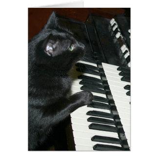 Cartão Considerando do órgão do gato