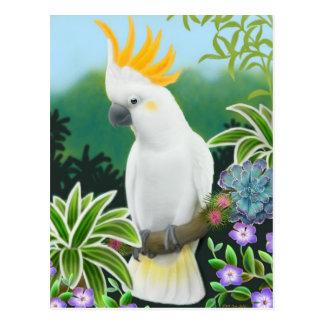 Cartão cor de limão do Cockatoo
