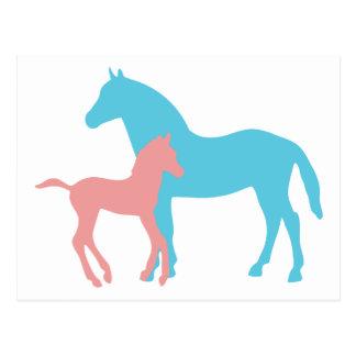 Cartão cor-de-rosa & azul do cavalo & do potro da