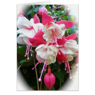 Cartão cor-de-rosa & branco de Fuschia