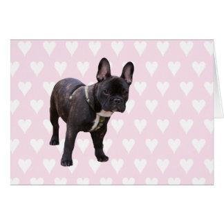 Cartão cor-de-rosa & branco do buldogue francês do