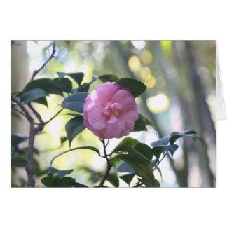 Cartão cor-de-rosa da camélia
