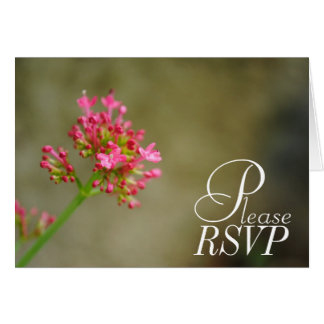 Cartão cor-de-rosa da flor de RSVP