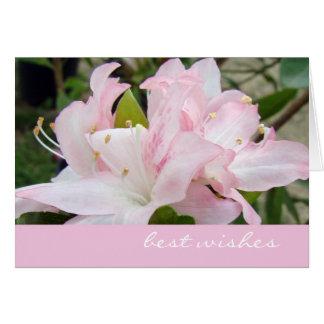 Cartão cor-de-rosa das azáleas