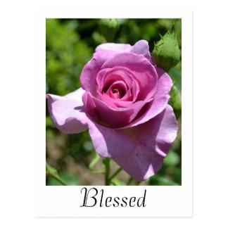 Cartão cor-de-rosa das bênçãos