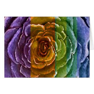 Cartão cor-de-rosa do arco-íris