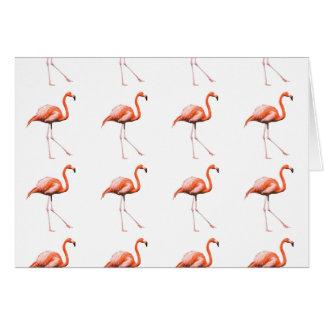 Cartão cor-de-rosa do flamingo