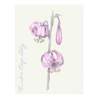 Cartão cor-de-rosa do lírio