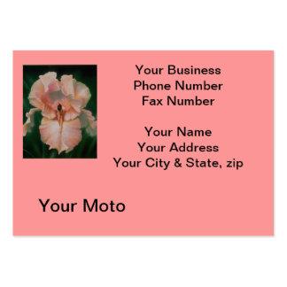 Cartão cor-de-rosa do perfume do angora cartão de visita