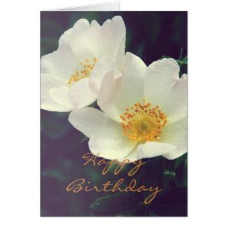 Cartão cor-de-rosa selvagem das flores
