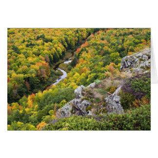Cartão Cor do outono das montanhas do porco-