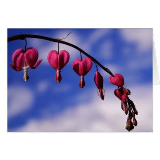 Cartão [Coração de sangramento das flores coloridas] -