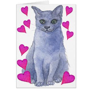 Cartão Corações azuis do gato & do amor do russo