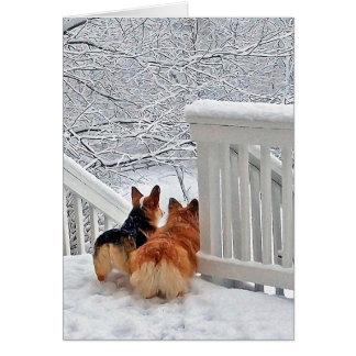 Cartão Corgis na neve