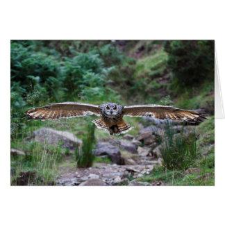 Cartão Coruja de Eagle. Movimento dianteiro