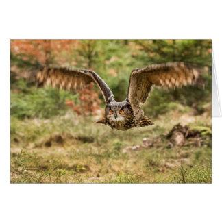 Cartão Coruja de Eagle na floresta